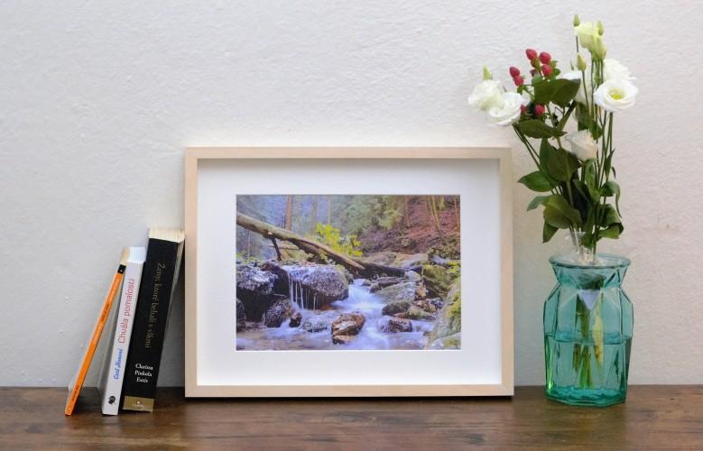 Obrazy z fotografií